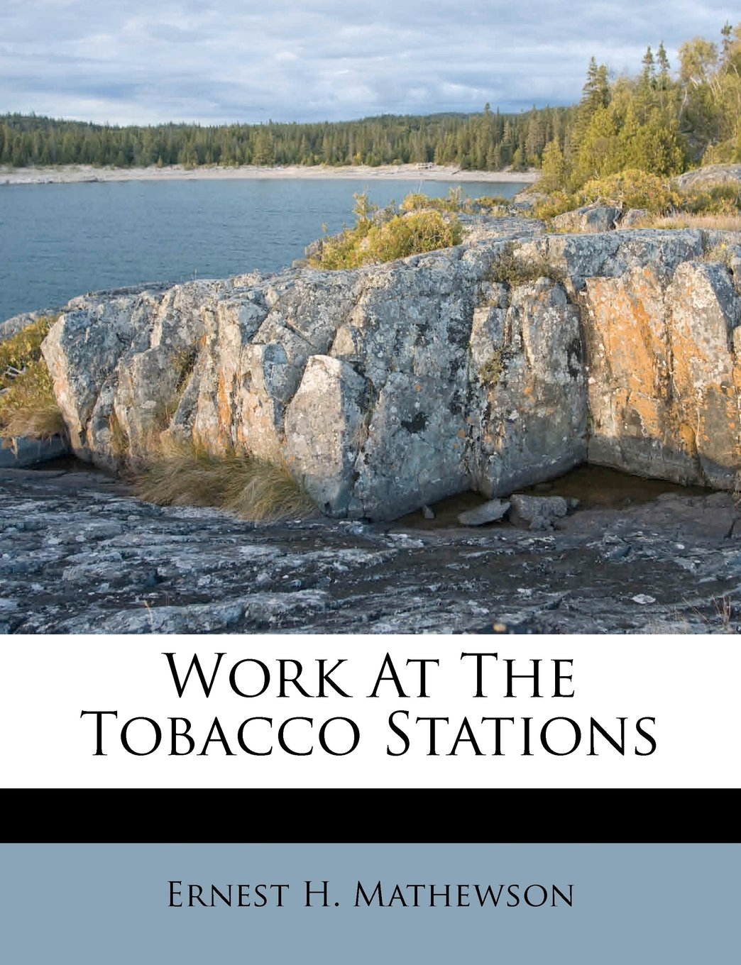 Download Work At The Tobacco Stations pdf