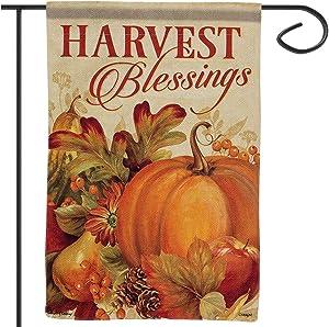 "Apipi Harvest Blessings Fall Garden Flag 12""×18""- Double-Sided Decorative Fall Autumn Harvest Yard Flag"