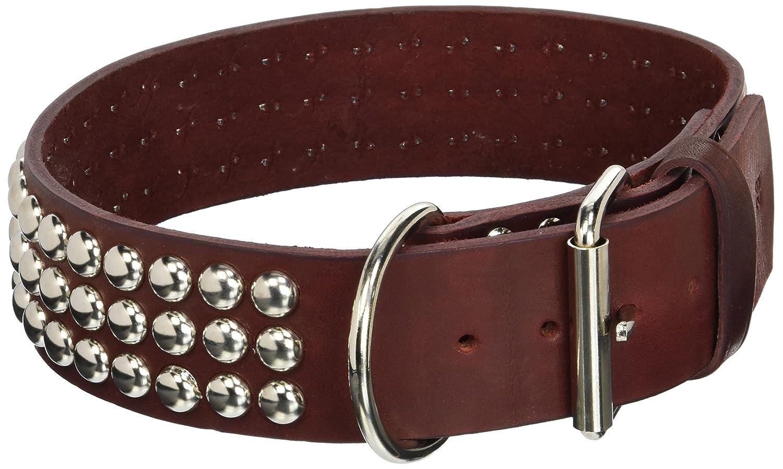 Burgundy 2\ Burgundy 2\ OmniPet 2063-BU28 Bredhers 2  x 28  Studded DF Latigo Leather Dog Collar, X-Large, Burgundy