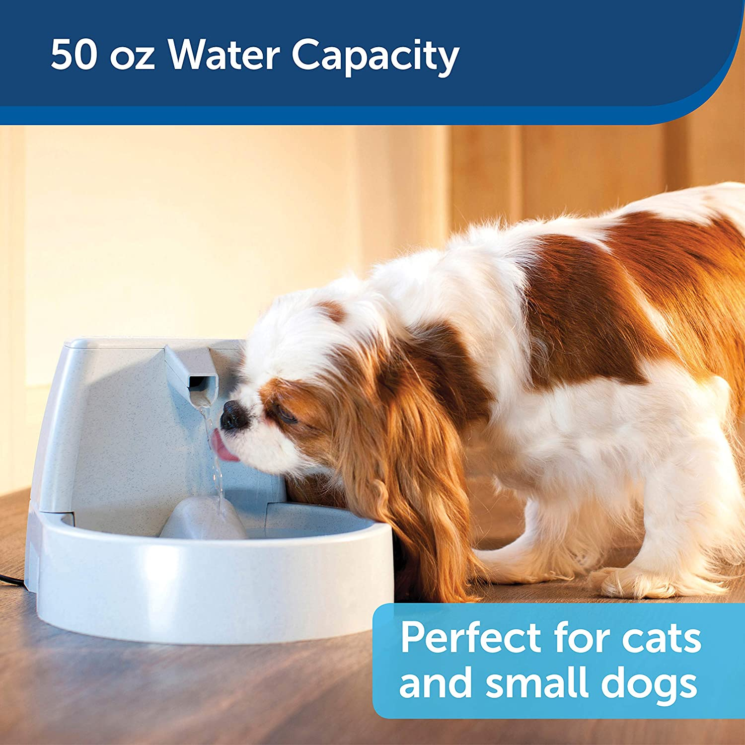 PetSafe Drinkwell Original or 1/2 Gallon Pet Water Fountain for Small Dogs