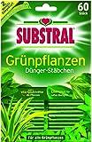Substral - Fertilizante en varitas para plantas verdes (60 varitas)