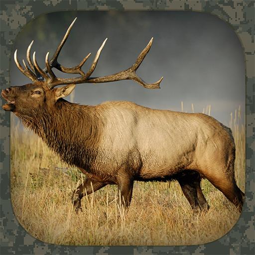 Moose Hunting Calls - Elk Hunting Calls