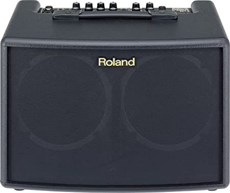 Roland AC-60 Amplifier