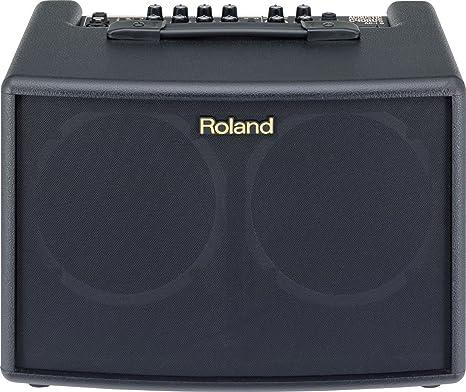 Roland AC-60 - Amplificador para guitarra eléctrica: Amazon.es ...