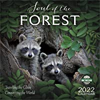 Soul of the Forest 2022 Wall Calendar: Traveling the Globe, Connecting the World
