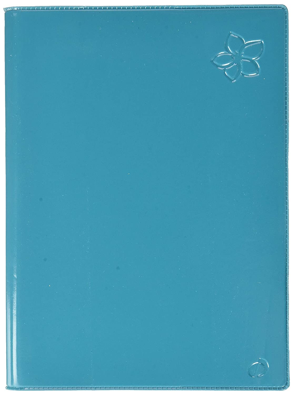 Amazon.com : Quo Vadis Fiji Textagenda Daily Academic Diary ...