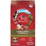 Purina ONE SmartBlend Natural Adult Lamb Dry Dog Food