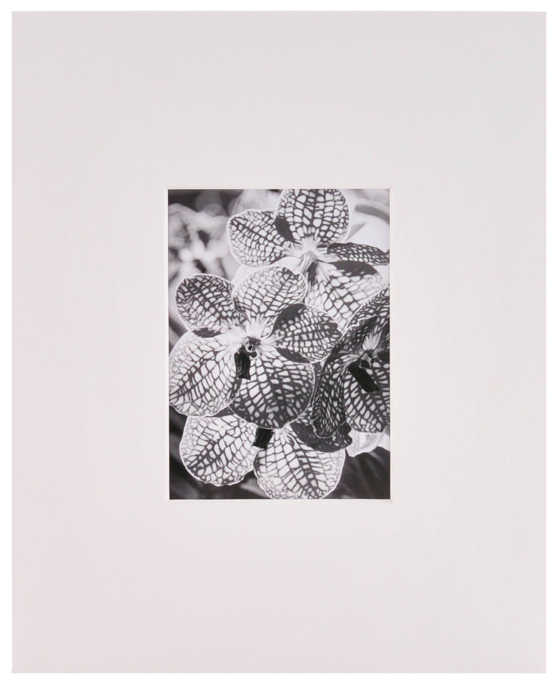 Nielsen Bainbridge Artcare By White 11x14 Pre-Cut Museum Quality Archival Picture Mat For 5x7 Photo by Nielsen Bainbridge