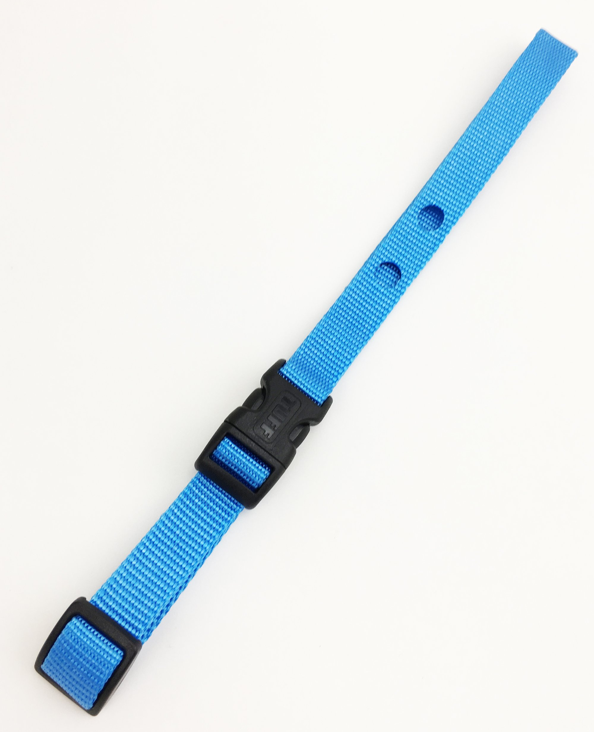 Dog Fence Receiver Heavy duty Replacement Strap Blue Lagoon