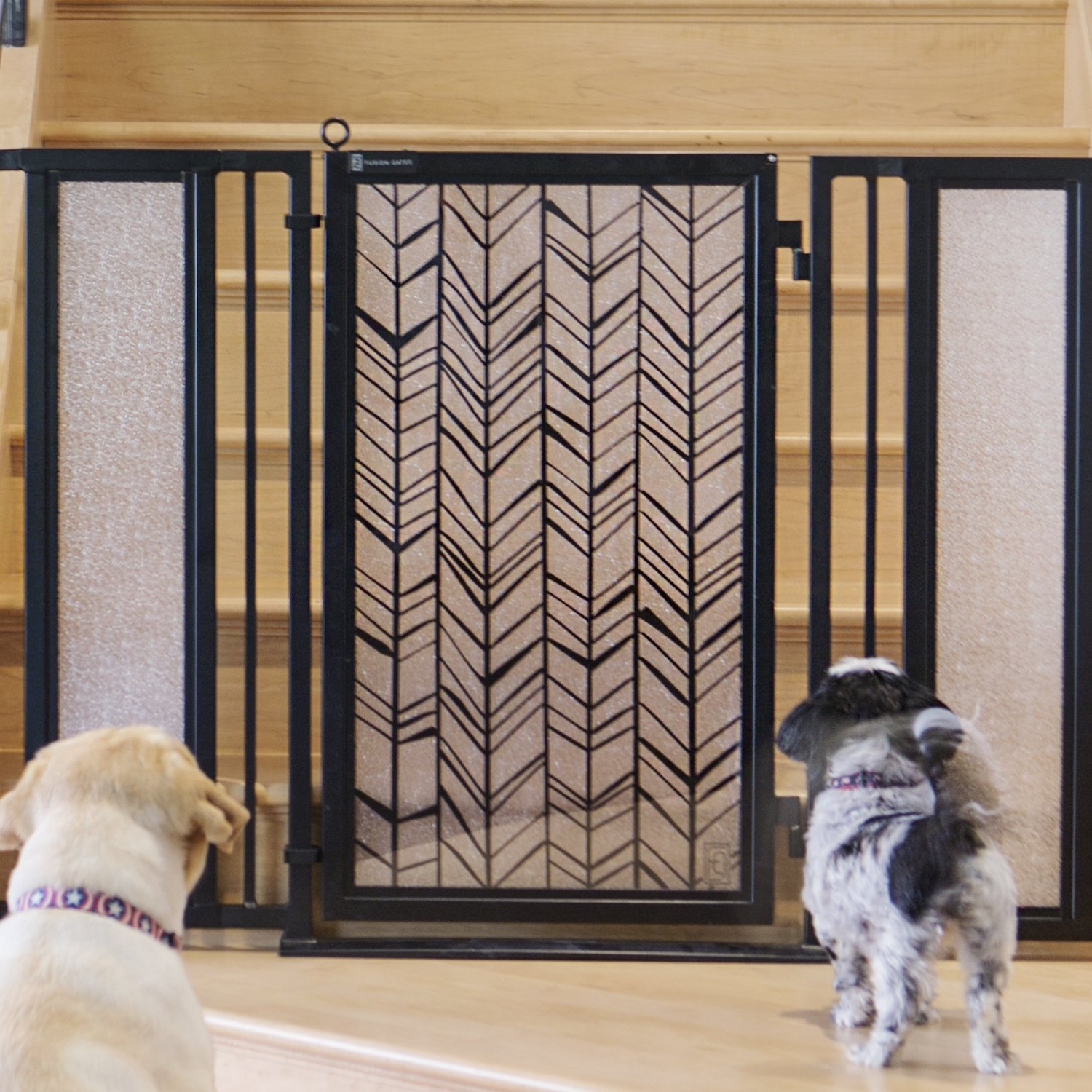 Baby & Pet Gate featuring the Chevron Trail Design from Fusion Gates (Black, 52'' - 60'')