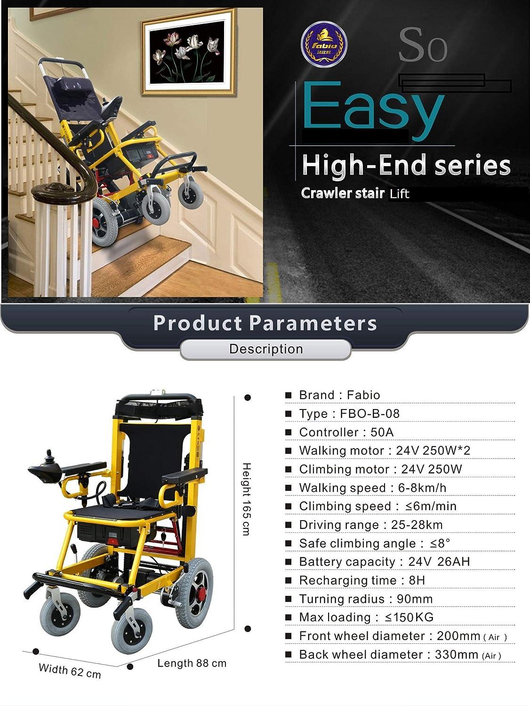 Amazon.com: Fabio - Elevador de escalera para interiores y ...