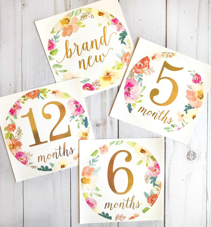 Amazon.com: Bebé Mes Pegatinas | 16 bebé Milestone Stickers ...