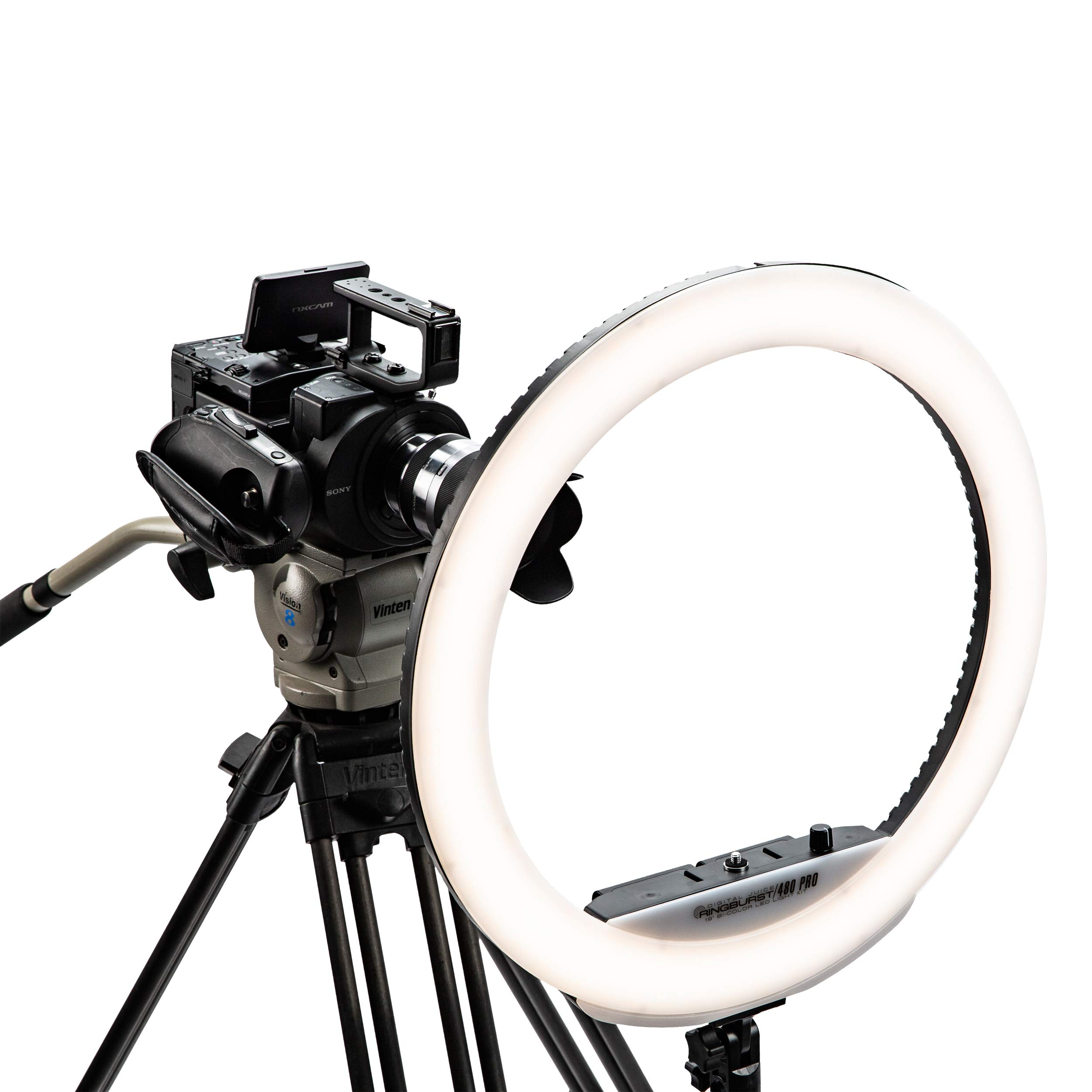 Digital Juice RingBurst 480 PRO - Affordable Bi-Color LED Ring Light: 19 Inch, 55W, 5600K Color Temperature, Dimmable Photo Studio Lighting Kit for Makeup Tutorials, YouTube, Vimeo, Vine Shooting by Digital Juice