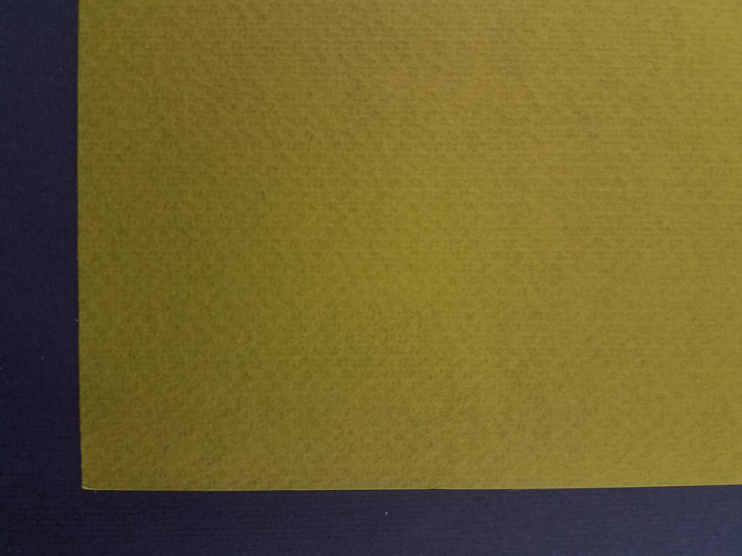Murillo Fabriano, 27'' x 19'' - 360 GSM - Olive Green #910 (10 Sheet Package) by Murillo