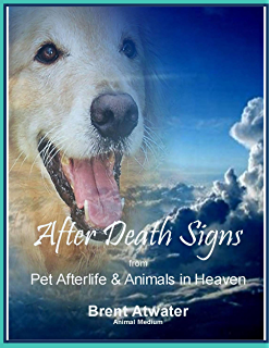 Pets and the afterlife how pets communicate from the other side after death signs from pet afterlife and animals in heaven how to ask for signs fandeluxe Document
