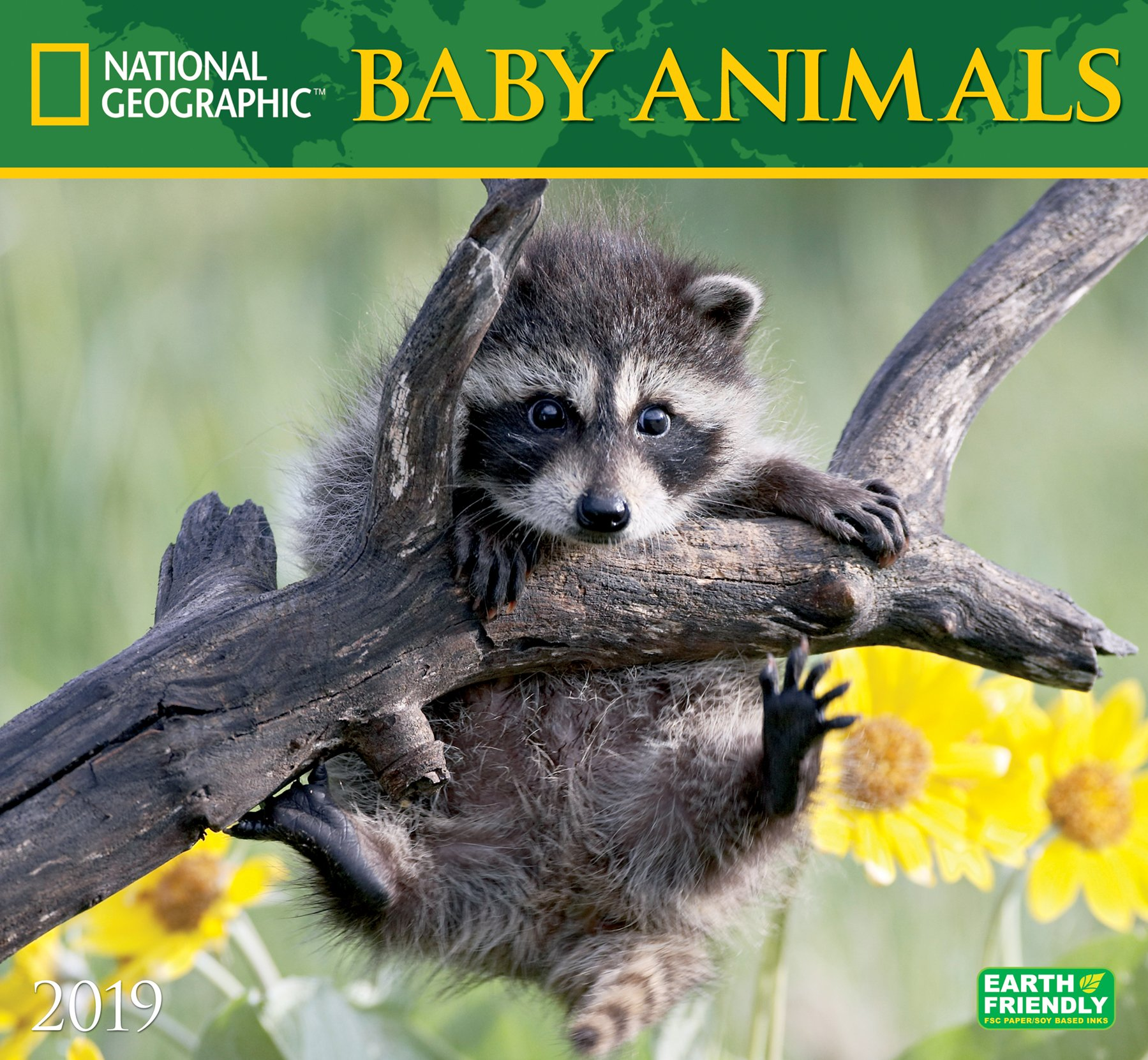 national geographic baby animals 2019 wall calendar