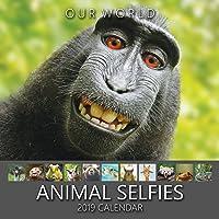 Our World: Animal Selfies 2019 Wall Calendar. Funny Animal Calendar
