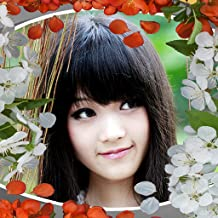 Collage de photo de jardin japonais