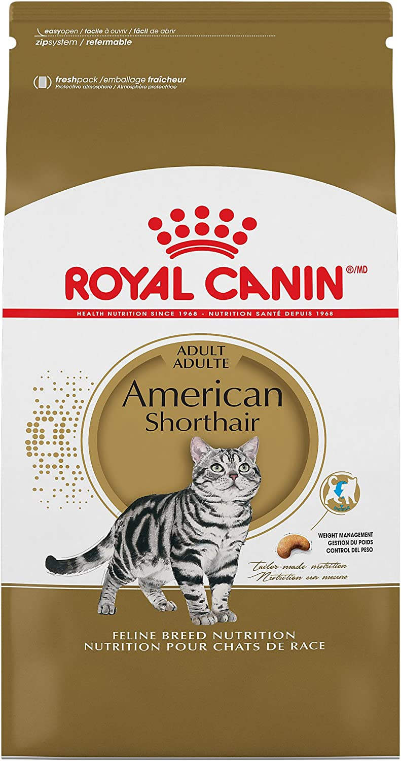 Royal Canin American Shorthair Breed Adult Dry Cat Food, 5.5 lb.