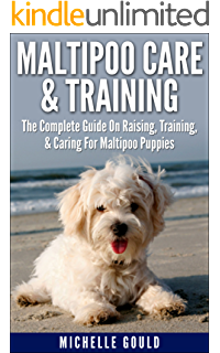 Maltipoo Puppies: Essential Facts, Choosing A Breeder, and Why This Is A Favorite Designer Dog