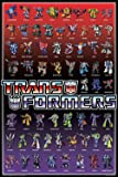 Aquarius Transformers Cast Poster, 24-Inch by 36-Inch
