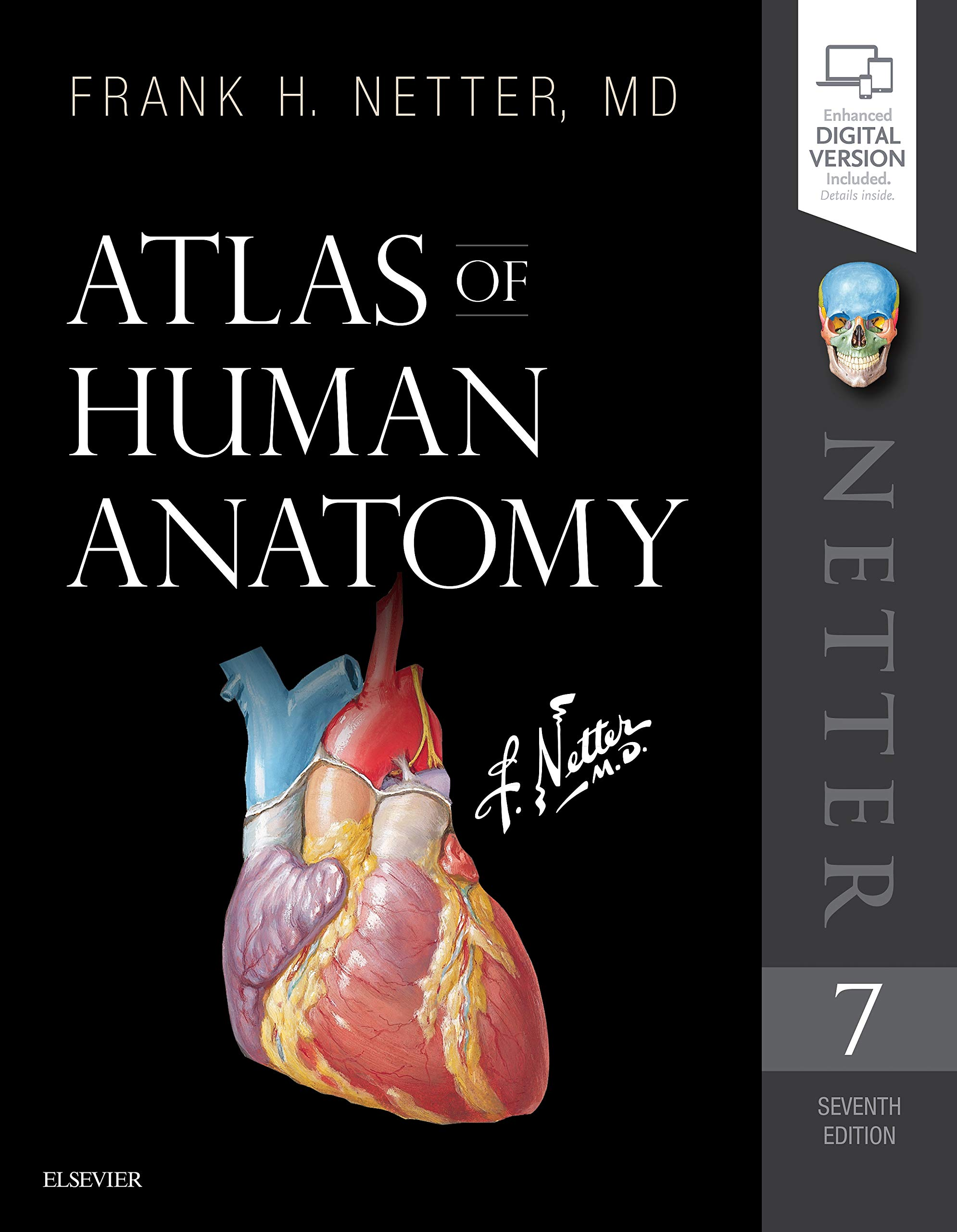 Atlas Of Human Anatomy 7e Netter Basic Science Amazon