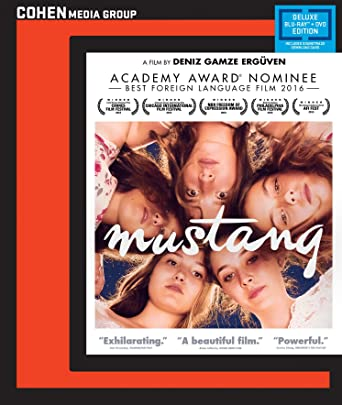 mustang full movie with english subtitles download