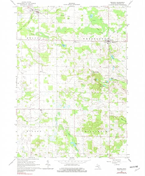 Mecosta Michigan Map.Amazon Com Yellowmaps Mecosta Mi Topo Map 1 24000 Scale 7 5 X