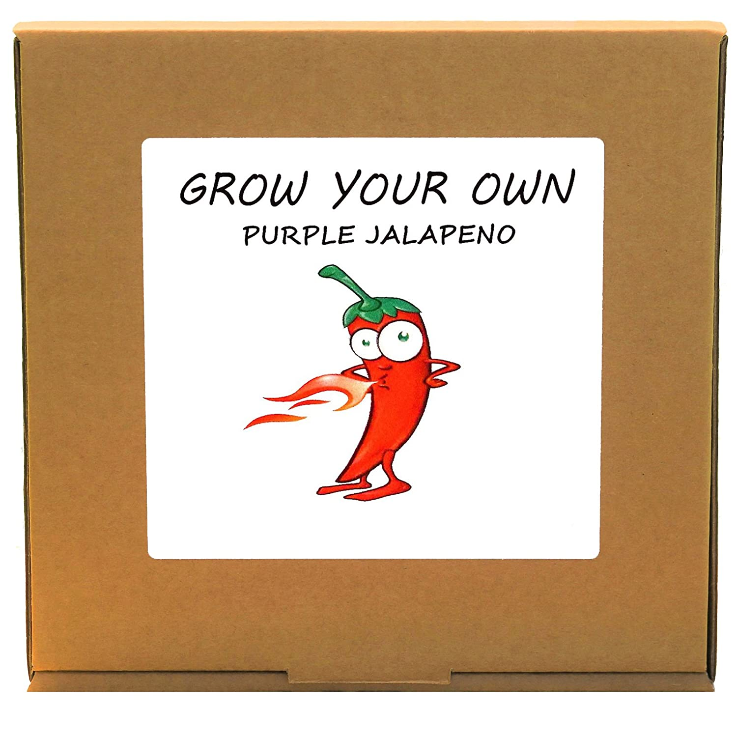 Grow Your Own Purple Jalapeno Hot Chillies Plant Kit - Unusual Christmas Gardening/Gardeners Gift GrowYourOwnPlants