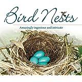Bird Nests: Amazingly Ingenious and Intricate (Bird Appreciation)