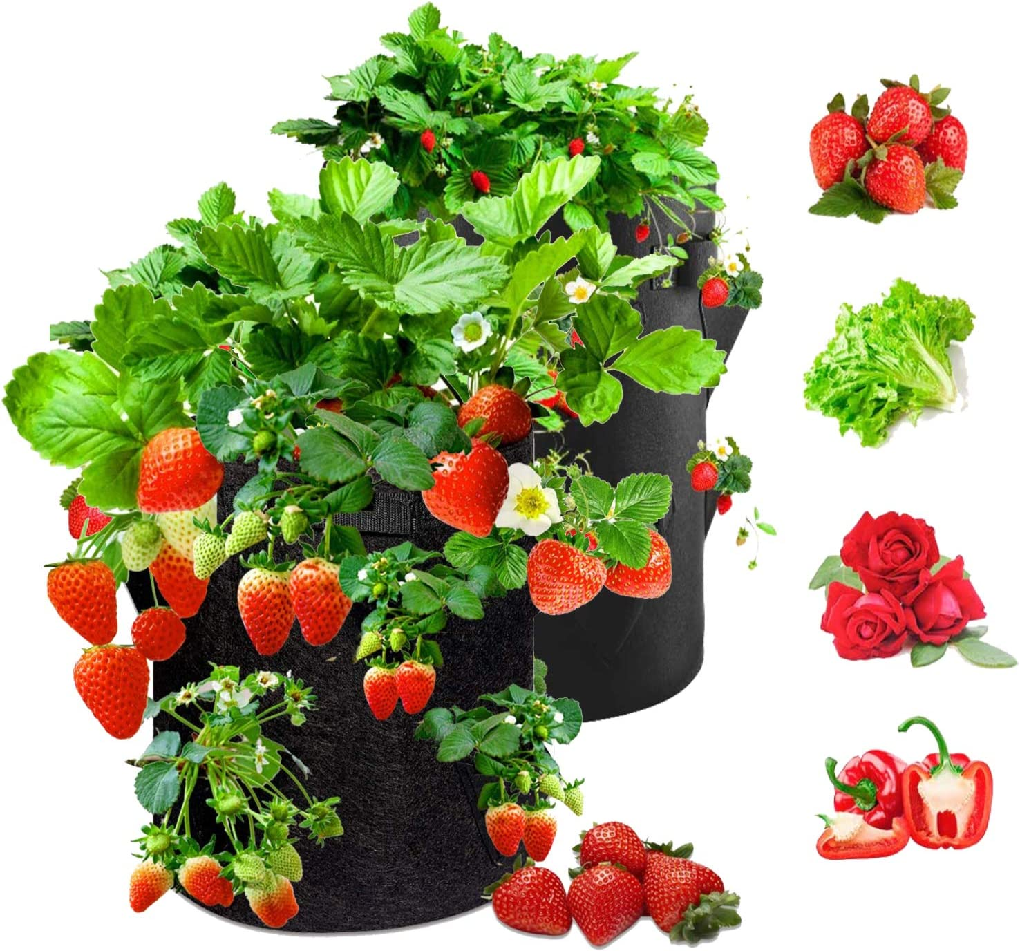 Strawberry Grow Bags 2-Pack 10 Gallon Strawberry Planter Strawberry and Herb Grow Bag with 6 Side Grow Pockets