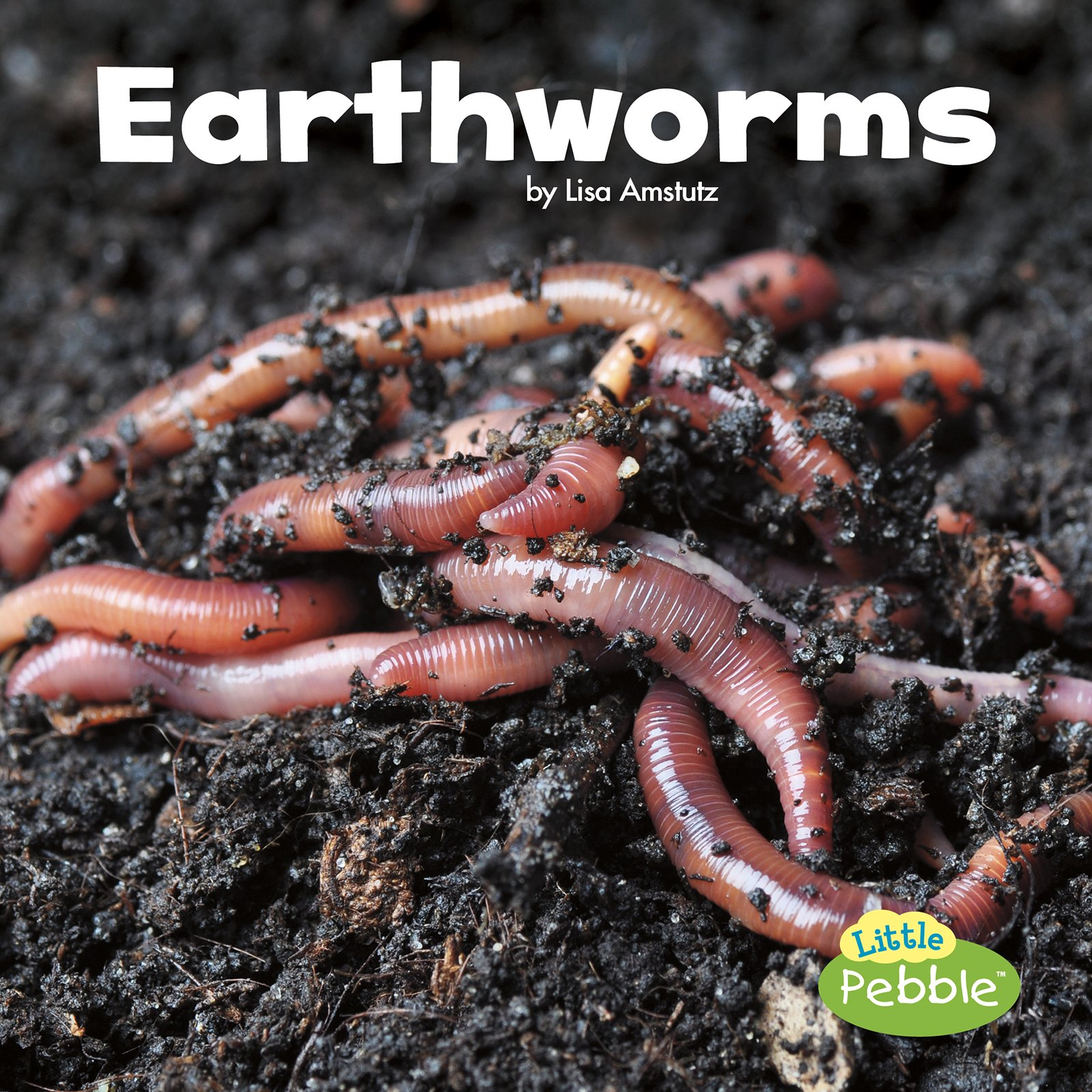 Earthworms (Little Critters): Amstutz, Lisa J.: 9781515719427 ...