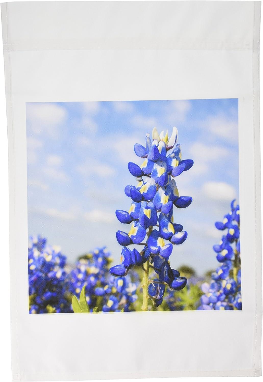 3dRose fl_94453_1 Bluebonnets, Freyburg, Texas-US44 FVI0019-Franklin Viola Garden Flag, 12 by 18-Inch