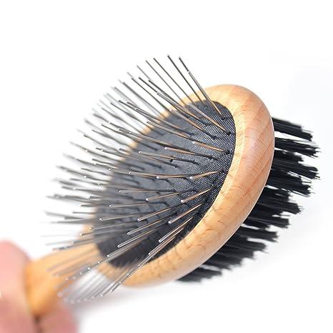 Amazon.com: pawspamper Pin y cepillo para polvo de cerdas ...