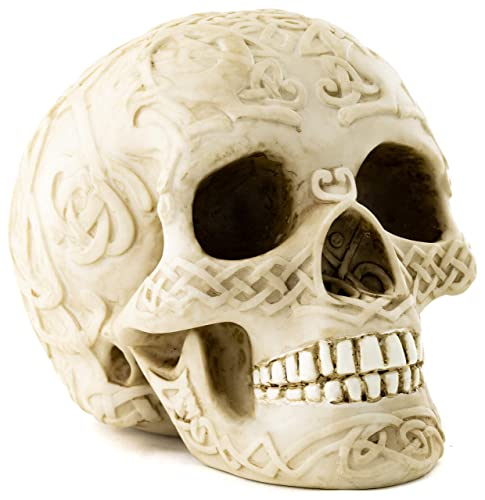 Top Collection Decorative Skull Statue – Hand Painted Human Skull Sculpture – Collectible 4.75-Inch Gothic Halloween Pagan Figurine Celtic White