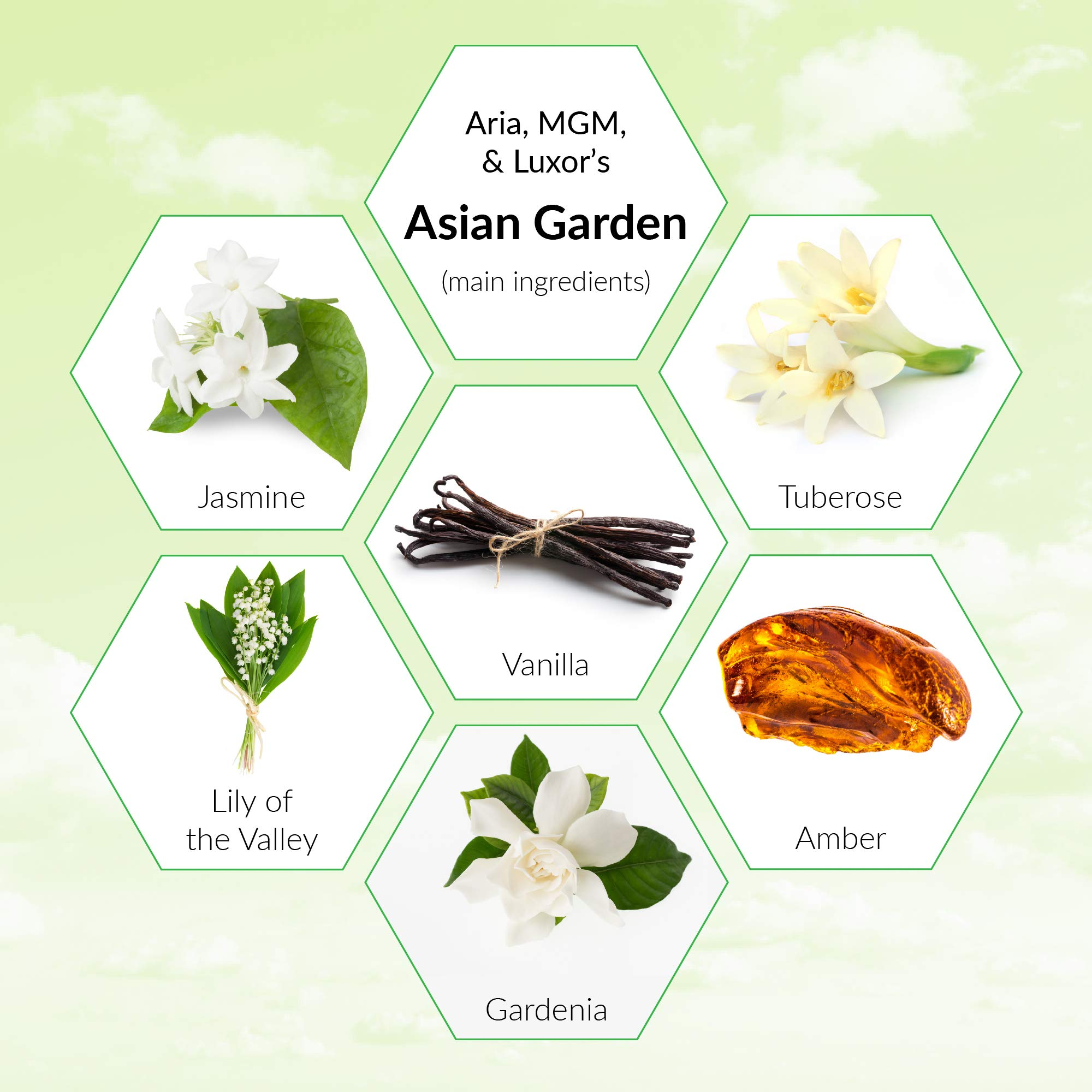 4-Ounce Fragrance Oil Refill for Aroma Diffusion Machine, Asian Garden Essential Oil Blend (Experienced at Aria, Luxor & MGM Hotels) by Scentcerely - Aroma Retail (Image #3)