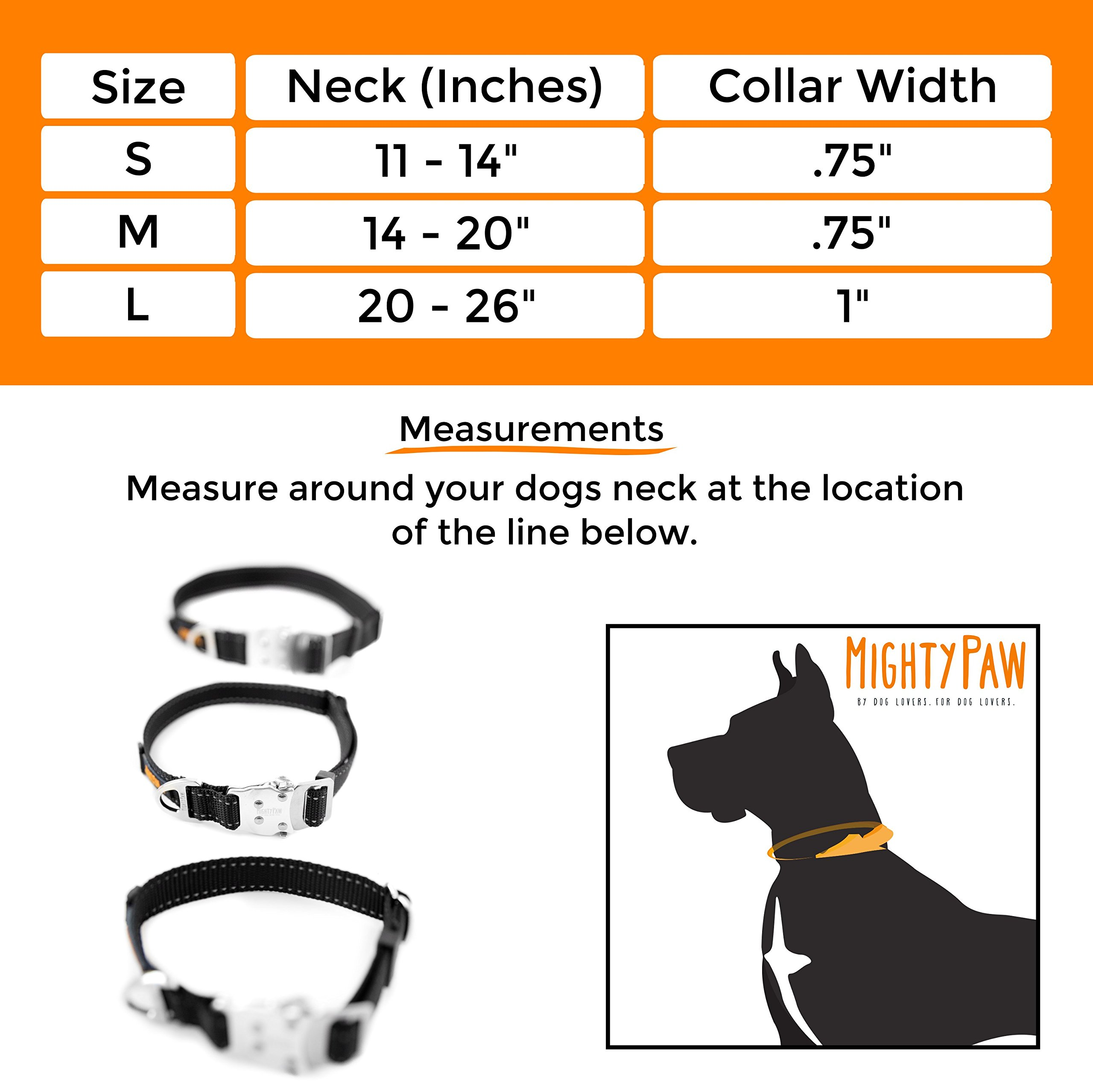 Mighty Paw Metal Buckle Dog Collar, All Metal Hardware, Lightweight Collar, Reflective Stitching, Strong, Durable (Medium, Black) by Mighty Paw (Image #8)