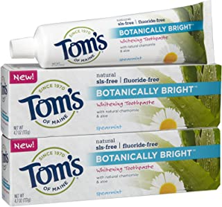 product image for Tom's of Maine Botanically Bright, Spearmint - 2 pk