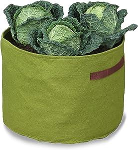 Tierra Garden 50-VIG13 Haxnicks Vigoroot Vegetable Planter