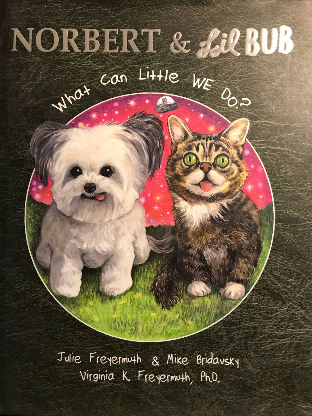 Download Norbert & Lil Bub What Can Little We Do? PDF