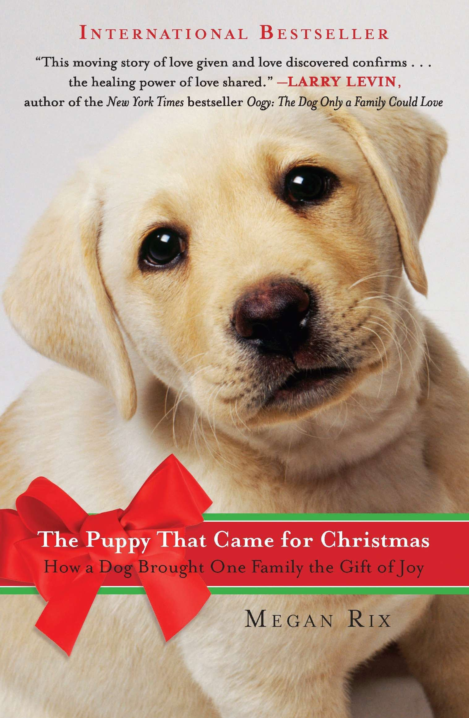 Puppies Ready For Christmas 2021 Buy The Puppy That Came For Christmas How A Dog Brought One Family The Gift Of Joy Book Online At Low Prices In India The Puppy That Came For Christmas How