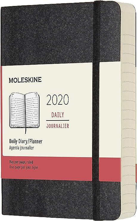 Amazon.com: Moleskine Classic 12 Month 2020 Daily Planner ...
