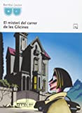 El Misteri Del Carrer De Les Glicines - Fitxa Lectura