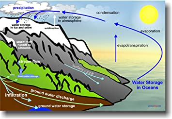 Amazon.com : The Water Cycle - Educational Classroom Science ...