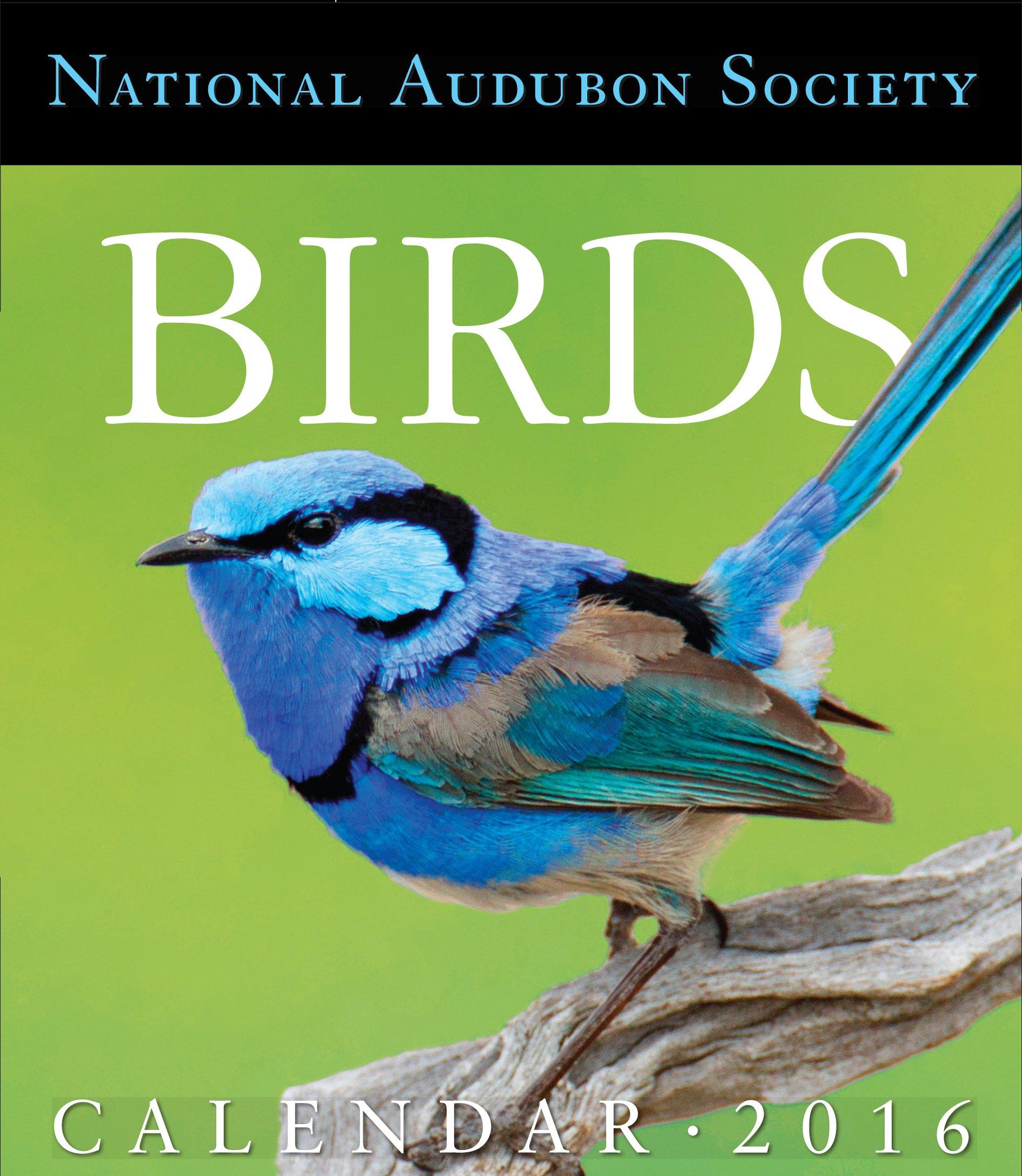 Amazon.com: Audubon Birds Page-A-Day Gallery Calendar 2016 ... on house wren house plans, purple martin house plans, pvc bluebird house plans, national wildlife bird house plans,