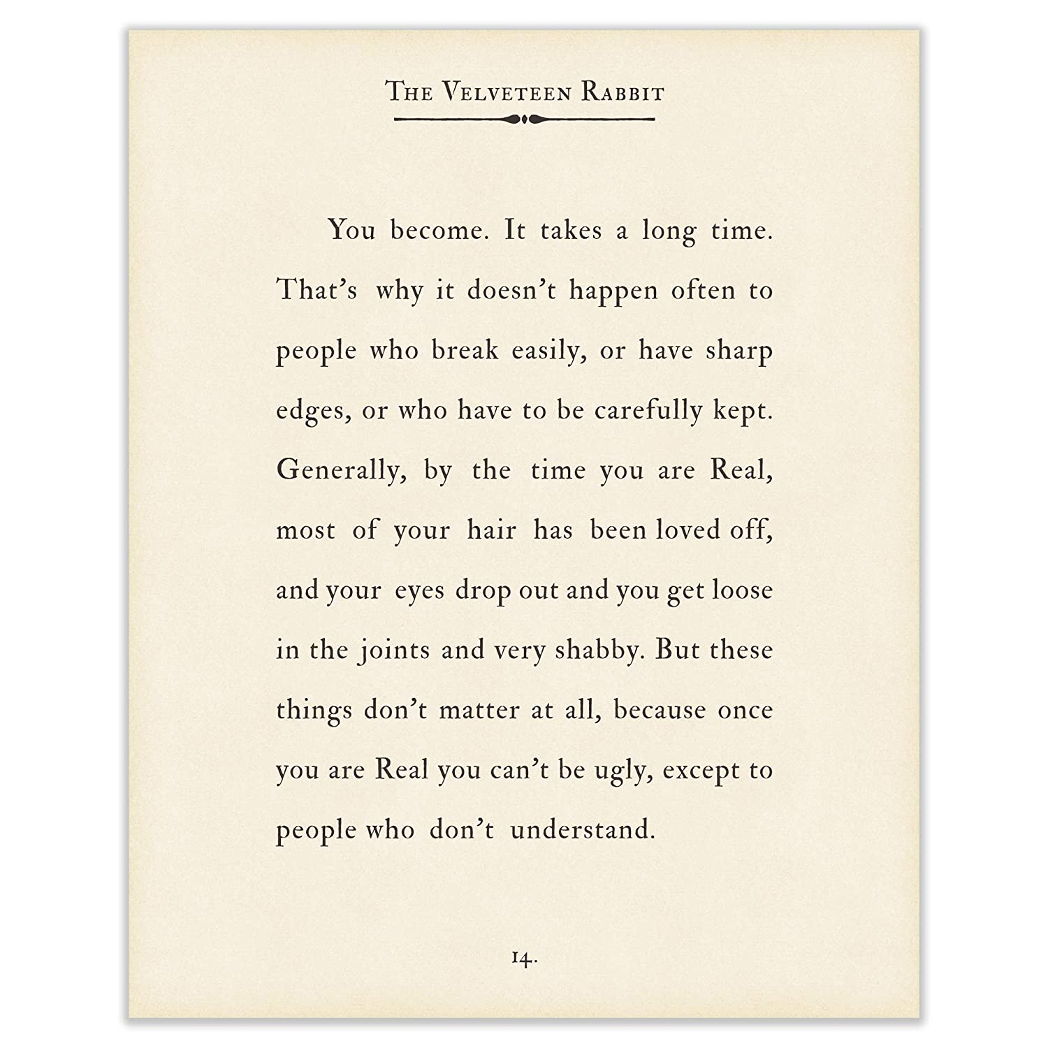 Amazon.com: Art of Observation Velveteen Rabbit Quote Book ...