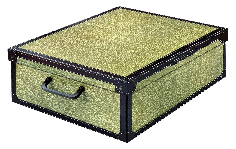 LAVATELLI Tapirus Caja en Carton Bajo Cama
