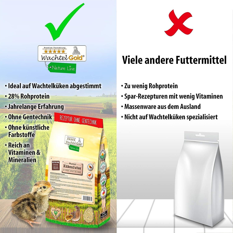 WachtelGold® El alimento para pollos de codorniz Nature ♥ │ 5kg ...