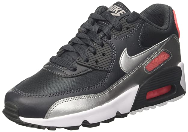 Zapatos Mujer Nike Air Max 90 Mesh (GS) Anthracite White