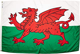 product image for Annin Flagmakers Model 221115 Wales Flag Nylon SolarGuard NYL-Glo, 4x6 ft, 100% Made in USA to Official United Nations Design Specifications